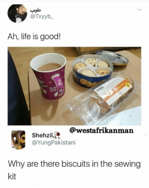 Life, Good, and Life Is Good: @Txyyb  Ah, life is good!  @westafrikanman  Shehzil,  @YungPakistani  Why are there biscuits in the sewing  kit meirl