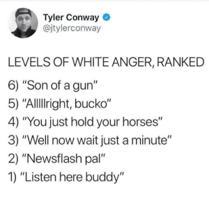 "meirl: Tyler Conway  @jtylerconway  LEVELS OF WHITE ANGER, RANKED  6) ""Son of a gun""  5) ""Allllright, bucko""  4) ""You just hold your horses""  3) ""Well now wait just a minute""  2) ""Newsflash pal  1) ""Listen here buddy"" meirl"