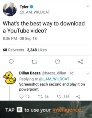 Me_irl: Tyler  @L_AM_WILDCAT  What's the best way to download  a YouTube video?  8:36 PM 08 Sep 18  68 Retweets 3,348 Likes  Dillan Baeza @baeza_dillan 1d  Replying to @l_AM_WILDCAT  Screenshot each second and play it  powerpoint  t36  888  12  TAP E to use your Intelligence. Me_irl