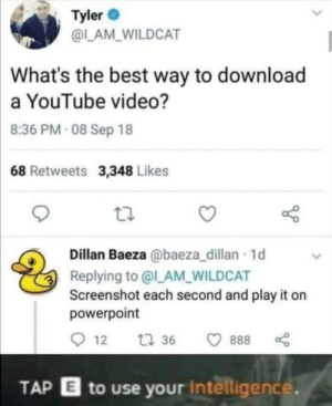 IQ -1000: Tyler  @LAM WILDCAT  What's the best way to download  a YouTube video?  8:36 PM 08 Sep 18  68 Retweets 3,348 Likes  Dillan Baeza @baeza_dillan 1d  Replying to @l_AM_WILDCAT  Screenshot each second and play it on  powerpoint  12  t 36  888  TAP E to use your Intelligence. IQ -1000