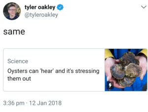 Dank, Memes, and Target: tyler oakley  @tyleroakley  same  Science  Oysters can 'hear' and it's stressing  them out  3:36 pm 12 Jan 2018 They might just be a little shellfish by ChexLemeneux42 FOLLOW 4 MORE MEMES.