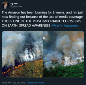 Amazon, Dank, and Iphone: tyler  @tyswizzlee  The Amazon has been burning for 3 weeks, and I'm just  now finding out because of the lack of media coverage.  THIS IS ONE OF THE MOST IMPORTANT ECOSYSTEMS  ON EARTH. SPREAD AWARENESS #PrayforAmazonia  11:44 AM Aug 20, 2019 Twitter for iPhone Me_irl by DurimS MORE MEMES