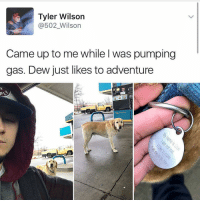 Memes, 🤖, and Bieber: Tyler Wilson  @502 Wilson  Came up to me while was pumping  gas. Dew just likes to adventure 😂😂😂lol - - - - - - - - text post textpost textposts relatable comedy humour funny kyliejenner kardashians hiphop follow4follow f4f kanyewest like4like l4l tumblr tumblrtextpost imweak lmao justinbieber relateable lol hoeposts memesdaily oktweet funnymemes hiphop bieber trump