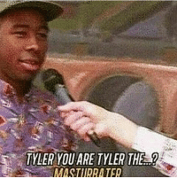 Dank, Love, and Memes: TYLER YOU ARE TYLER THE  MASTURRA TER Alrighty back to those dank maymays you guys love
