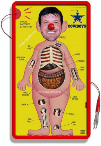 Tony Romo, Game, and Tibia: TYPE D  BATTERIES  (2 Required)  CLAVICLE  RIS  CAGE  LIVER  INTERCEPTION  ELBOW .  STOMACH  RADIUS  ULNA  @FakeSportsCentr  LARGE  INTESTINE  SMALL  INTESTINE  FEMUR  PATELLA  TIBIA  ANKLE  OINT BREAKING: Milton Bradley releases special edition Tony Romo Operation game.   **WARNING: Choking Hazard  Credit - Brent Henderson