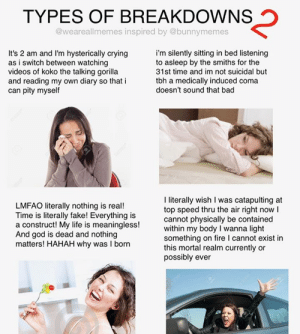 Bad, Crying, and Fake: TYPES OF BREAKDOWNS  @weareallmemes inspired by @bunnymemes  It's 2 am and I'm hysterically crying  as i switch between watching  videos of koko the talking gorilla  and reading my own diary so that i  can pity myself  i'm silently sitting in bed listening  to asleep by the smiths for the  31st time and im not suicidal but  tbh a medically induced coma  doesn't sound that bad  I iterally wish I was catapulting at  top speed thru the air right now  cannot physically be contained  within my body I wanna light  something on fire I cannot exist in  this mortal realm currently or  possibly ever  LMFAO literally nothing is real!  Time is literally fake! Everything is  a construct! My life is meaningless!  And god is dead and nothing  matters! HAHAH why was I born