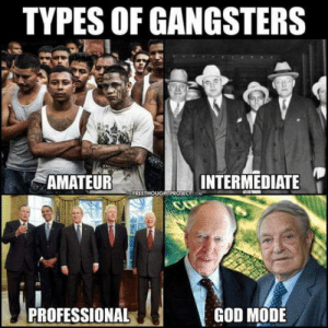 Agreed.: TYPES OF GANGSTERS  AMATEUR  INTERMEDIATE  PROFESSIONAL  GOD MODE Agreed.