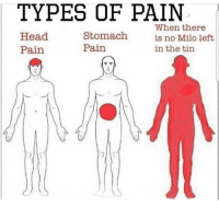 milo: TYPES OF PAIN  Head  Pain  Stomach  Pain  When there  is no Milo left  in the tin