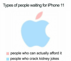 Hilarious iPhone 11 Memes That Are Mind-blowing (30 Pics)-02: Types of people waiting for iPhone 11  people who can actually afford it  people who crack kidney jokes Hilarious iPhone 11 Memes That Are Mind-blowing (30 Pics)-02