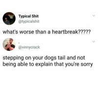 Dogs, Shit, and Sorry: Typical Shit  @typicalshit  what's worse than a heartbreak?????  @vinnycrack  stepping on your dogs tail and not  being able to explain that you're sorry Factual 💯