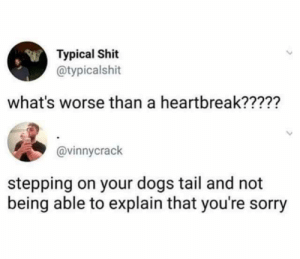 Dank, Dogs, and Memes: Typical Shit  @typicalshit  what's worse than a heartbreak?????  @vinnycrack  stepping on your dogs tail and not  being able to explain that you're sorry I can agree by MutatedFrog- MORE MEMES