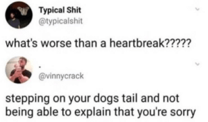 Dogs, Shit, and Sorry: Typical Shit  @typicalshit  what's worse than a heartbreak?????  @vinnycrack  stepping on your dogs tail and not  being able to explain that you're sorry That crushes me inside everytime