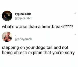 heartbreak: Typical Shit  @typicalshit  what's worse than a heartbreak?????  @vinnycrack  stepping on your dogs tail and not  being able to explain that you're sorry
