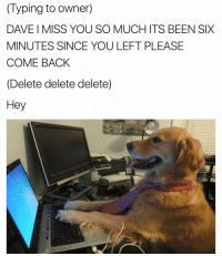 Dank Memes, Dave, and Miss You: (Typing to owner)  DAVE MISS YOU SO MUCH ITS BEEN SIX  MINUTES SINCE YOU LEFT PLEASE  COME BACK  Delete delete delete)  Hey  Funny What did we do to deserve dogs