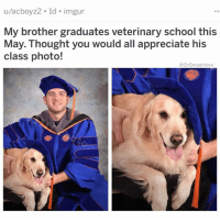(@hilarious.ted) is IG's best animal meme account hands down. . . . . chicago funny lol cats cat humor smile pupper puppy dog meme doggo comedy hilarious: u/acboyz2. ld. imgur  My brother graduates veterinary school this  class photo!  May.: Thought you would all appreciate his  @DrSmashlove (@hilarious.ted) is IG's best animal meme account hands down. . . . . chicago funny lol cats cat humor smile pupper puppy dog meme doggo comedy hilarious
