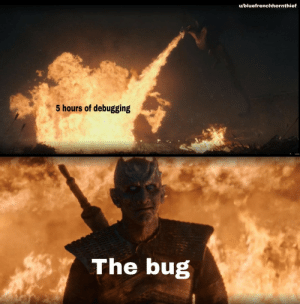Be Like, Bug, and Like: u/bluefrenchhornthief  5 hours of debugging  The bug It do be like that sometimes
