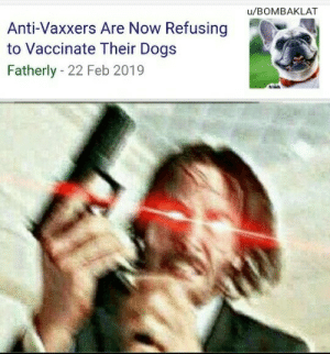 Dogs, John Wick, and Memes: u/BOMBAKLAT  Anti-Vaxxers Are Now Refusing  to Vaccinate Their Dogs  Fatherly - 22 Feb 2019 John Wick want to know your location via /r/memes https://ift.tt/2Cwcb1F