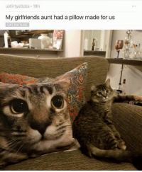 Memes, 🤖, and Disturbed: u/dirtys0 cks. 19h  My girlfriends aunt had a pillow made for us  CAT PICTURE Well, that is onnly a little disturbing.