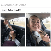 """Bless Up, Memes, and Smashing: u/ EmSon 1d i.redd.it  Just Adopted!!  @DrSmashlove So my lil homegirl messaged me: """"dear smash. I have a burning (literally) question that I'm hoping you can settle once and for all. is it possible for a man, when his pp slips out of the v@g mid-stroke, to re-enter the wrong hole by accident? it seems impossible to me because they feel so different, but this has happened more times than I can count. last night was the last straw- literally the biggest I've ever seen- and it hurt so badly that I almost fainted. I'll be dreaming of a bvtt-plug-shaped ice tray for the next month. should I really believe this was an honest mistake? xo"""" WHOA NELLAY 😂. I have extensive thoughts on this (as always) but first, imma let y'all go off in the comments. Ladies, do u believe a man when say he did this 'accidentally'? Men, have y'all 'accidentally' done this? Feel free to share. I'll let y'all know what I think in my next post. BE SAFE (and a lil spooky 👻) OUT THERE BLESS UP 😍😂😂😂"""