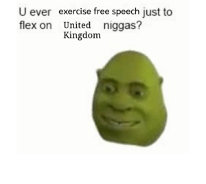 Flexing, Exercise, and Free: U ever exercise free speech just to  flex on United niggas?  Kingdom This format is offically dead