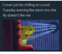 Anyone? 😩😂 mood: U ever just be chilling on a cool  Tuesday evening like damn bro she  rlly doesn't like me Anyone? 😩😂 mood