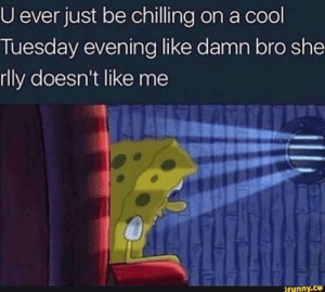 Spongebob hitting too close to home by bigmoist-ChrisHansen FOLLOW 4 MORE MEMES.: U ever just be chilling on a cool  Tuesday evening like damn bro she  rlly doesn't like me  ifunny.co Spongebob hitting too close to home by bigmoist-ChrisHansen FOLLOW 4 MORE MEMES.