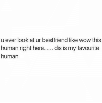 Memes, Omg, and Wow: u ever look at ur bestfriend like wow this  human right here  dis is my favourite  human Yes. This is exactly how I feel about my cat OMG