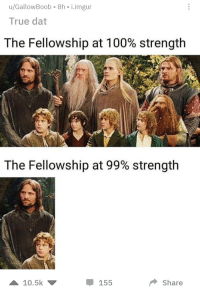 true dat: u/GallowBoob-8h i.imgur  True dat  The Fellowship at 100% strength  The Fellowship at 99% strength  10.5k ▼  Share