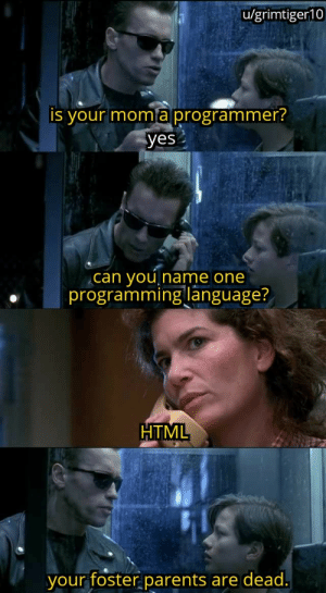For all new programmers: u/grimtiger10  is your moma programmer?  yes  you  programming language?  can  Iname one  HTML  your foster parents  are dead. For all new programmers