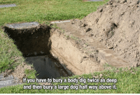 halfs: u hav to bury a body digtwice as deep  and then bury alarge dog half way above it