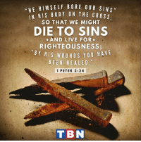 """Jesus, Life, and Memes: u HE HIM SELF BORE OUR SIN  HIS BODY ON THE CROss  SO THAT WE MIGHT  DIE TO SINS  AND LIVE FOR  RIGHTEOUSNESS  BY HIS WOUND Y OU HA  VE  BEEN HE A LED.""""  1 PETER 2:24  T BN Jesus sacrificed all to give us life!"""