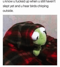 Memes, Birds, and 🤖: u know u fucked up when u still haven't  slept yet and u hear birds chirping  outside.