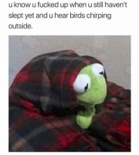 Me irl: u know u fucked up when u still haven't  slept yet and u hear birds chirping  outside. Me irl