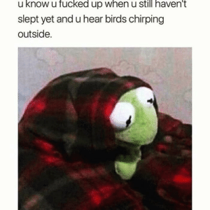 Cri Every tim via /r/memes https://ift.tt/2yffWsx: u know u fucked up when u still haven't  slept yet and u hear birds chirping  outside. Cri Every tim via /r/memes https://ift.tt/2yffWsx