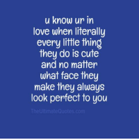 Cute Love Memes: u know ur in  love when literally  every little thing  they do is cute  and no matter  what face they  make they always  look perfect to you  The Ultimate Gouotes.com