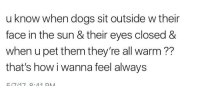 "Dogs, Http, and Hope: u know when dogs sit outside w their  face in the sun & their eyes closed &  when u pet them they're all warm??  that's how i wanna feel always <p>I hope we all can feel like this via /r/wholesomememes <a href=""http://ift.tt/2pimRMS"">http://ift.tt/2pimRMS</a></p>"