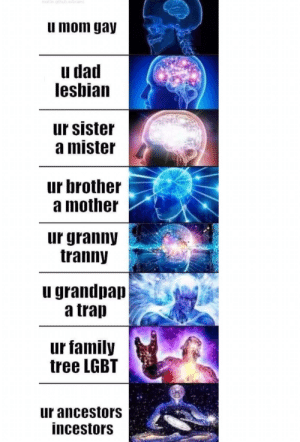Dad, Family, and Lgbt: u mom gay  u dad  leshian  ur sister  a mister  ur brother  a mother  ur granny  tranny  u grandpap  a trap  ur family  tree LGBT  ur ancestors  incestors The phrases of power