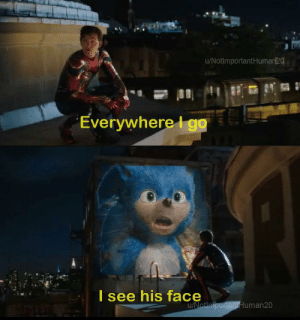 Sonic: Far From Green Hill Zone Act 1: u/NotlmportantHuman20  Everywherego  AL  I see his face  u/Notimportani Human20 Sonic: Far From Green Hill Zone Act 1