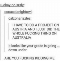 Definitely, Fucking, and Memes: u-okay-no-srsly:  cocacolanightowl:  calzonarizzles  I HAVE TO DO A PROJECT ON  AUSTRIA AND I JUST DID THE  WHOLE FUCKING THING ON  AUSTRALIA  It looks like your grade is going  down under  ARE YOU FUCKING KIDDING ME Definitely headed down under