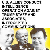 Image result for Intelligence Operation Trump