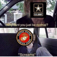 Funny, Meme, and Memes: U.S.ARMY  Why eant you just be normal?  NE CO  Screams* Normal is overrated. Thanks @mad.del ! . . . military militaryhumor militarymemes army navy airforce coastguard usa patriot veteran marines usmc airborne meme funny followme troops ArmedForces militarylife popsmoke