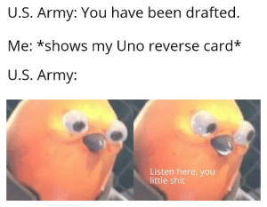 dont come to my house: U.S. Army: You have been drafted.  Me: *shows my Uno reverse card*  U.S. Army:  Listen here, you  little shit dont come to my house