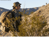 A 24-year-old lieutenant made history when she became the first and only woman in the Marine Corps to lead an infantry platoon. Lt. Marina A. Hierl's historic achievement came last September, when she graduated from the Marine Corps' Infantry Officer Course. The lieutenant is the only woman to lead a platoon of about 35 men.: U.S. Marine Corps photo by Sgt. Gregory Boyd A 24-year-old lieutenant made history when she became the first and only woman in the Marine Corps to lead an infantry platoon. Lt. Marina A. Hierl's historic achievement came last September, when she graduated from the Marine Corps' Infantry Officer Course. The lieutenant is the only woman to lead a platoon of about 35 men.