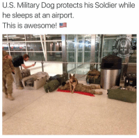 Memes, Military, and Awesome: U.S. Military Dog protects his Soldier while  he sleeps at an airport  This is awesome!  ERICA This!!! 😭🇺🇸🙏🏻