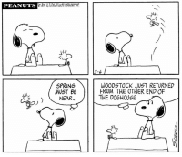 This strip was published on March 6, 1972.🌷: U.S.Pat. Off All rights reserved  PEANUTS  01972 by United Feature Syndicate, inc.  3-6  SPRING  WOODSTOCK JUST RETURNED  FROM THE OTHER END OF  MUST BE  THE DOGHOUSE  NEAR  (L This strip was published on March 6, 1972.🌷