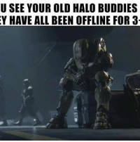 Memes, 🤖, and Mine: U SEE YOUR OLD HALO BUDDIES  Y HAVE ALL BEEN OFFLINE FOR 3 This can be said for any old game you used to play with friends. Mine was halo wars.