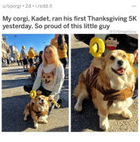 "Af, Corgi, and Love: u/sporgi 2d i.redd.it  My corgi, Kadet, ran his first Thanksgiving 5K  yesterday. So proud of this little guy  @DrSmashlove After yesterday's post my lil homegirl messaged me: ""Excuse me. I feel personally attacked by your last post."" Me: ""?"" Her: ""1 I f*cking love cheese. 2 I put out a cheese plate plus other apps. 3 I like being a fancy b*tch! 4 I AM martha stewart"". As u all know, smash is always willing to listen to differing opinions and acknowledge when he has erred. Indeed, as Alexander Pope expounded in An Essay on Criticism: ""To err is human, to forgive, divine."" I can admit when I've been wrong 😞. BUT IN THIS CASE I'M RIGHT AF 🤗 - ALL I'M TRYINA DO IS UPGRADE U - AND I FORGIVE U BABY GIRL FOR HAVING LACKLUSTER INCLINATIONS IN THE REALM OF APPETIZERS IT'S OK WE AIN'T ALL PERFECT, ALL WE CAN DO IS OUR BEST HummusAndGuacForLife YouCheeseHeadsAreAdorableTho *daddy voice* OneDayYouGonLearn BlessUp 😍😂😂😂"