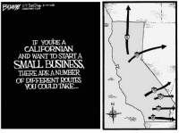 Memes, Business, and 🤖: U-T SanDiego 5-3-2o  IF YOUREA  CALIPORNIAN  AND WANT TO STARTA  SMALL BUSINESS,  THERE ARE ANUMBER  OF DIFERENT ROUTES  YOU COULD TAKE...  8 (CS)