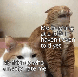 This Is Me by theshmizzz MORE MEMES: u/TheUseleb  Me laughing  at a joke  haven't even  told yet  My friends who  already hate me This Is Me by theshmizzz MORE MEMES