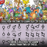 I already know all the Pokemon signs I need, they're called Unknown.: YOU T00K THE TIME TO LEARN 150+0F THESE.  PRINCESS CHRYSALIS29.TUMBLR.COM  Bigender: Bigender:  third Demiagender  female and  androgyne  Bigender: Male  Bigender Androgyne  Female  and neu  gender and dem  with demigirt  rnale  (example of  boy  trois  female male)  Demiboy  Neutrois  Agender  Inter gender  Gender less  Gender fluid: Gender fluid  Gender fluid: third  Gender fluid  female and  intergender gender and dem  androgyne  male  and neutrois  and female  IT WON'T KILL YOU TO LEARN  AA  MORE THAN TWO OF THESE.  Third Gen  der  Demigirl  Derniagender  (with third  ervo  ender I already know all the Pokemon signs I need, they're called Unknown.